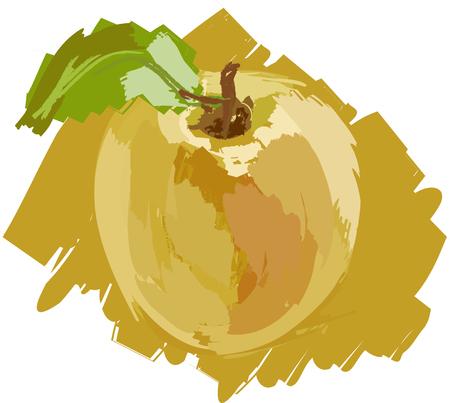yellow apple: Art. Vector illustration of yellow apple