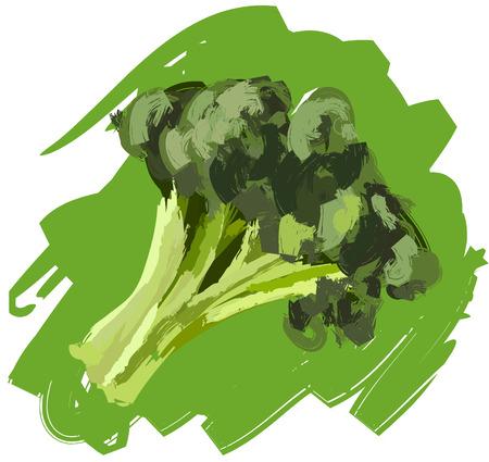 Art. Vector illustration of broccoli