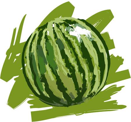 Art. Vector illustration of watermelon