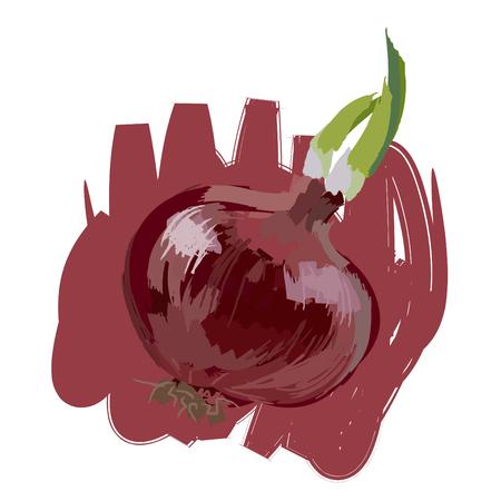 Art. Vector illustration of onion Illustration