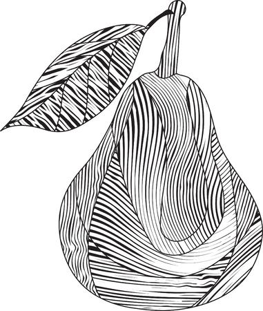Stylized striped pear Illustration