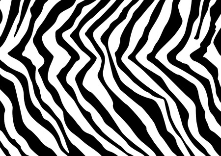 Abstract zebra pattern - Zebra skin simulation Vector