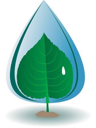 Clean drop on green leaf. Vector Vector