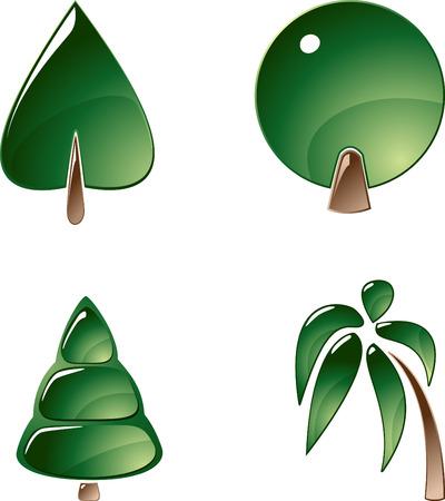 cedar tree: collection of brilliant trees