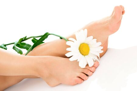 Woman legs with daisy flower isolated on white background Stock Photo - 6473119
