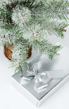 Gift box under christmas tree isolated over white photo