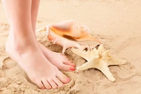 Human feet on sand with shell and starfish photo