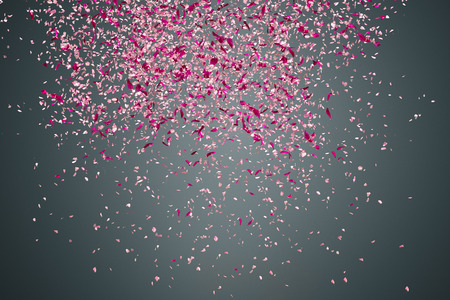 flowing: Pink flower petals failing down on dark background