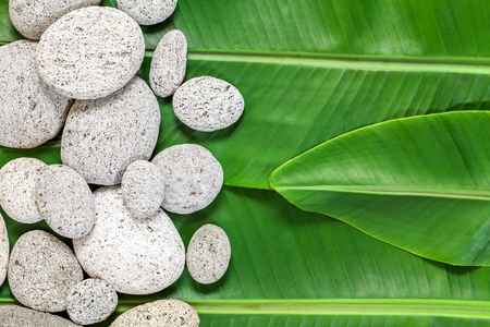 Banana leafs and white stones abstract organic nature background from top view
