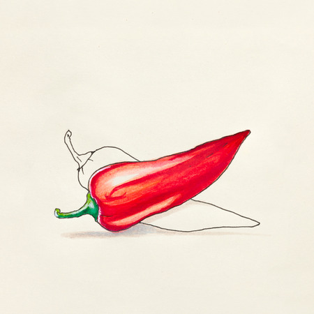 cayenne: Sketch drawing on a paper of red hot pepper