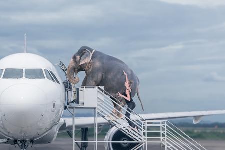 Mujer cargando elefante a bordo del avión. Concepto de sobrepeso de equipaje o viaje con mascotas domésticas