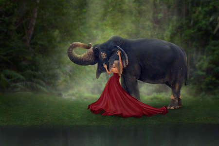 Fantasy art portrait of woman with elephant in tropical forest 版權商用圖片