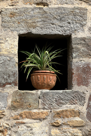 Window with stone wall and pot with flowers
