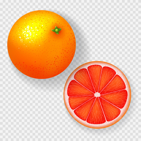 Realistic grapefruit isolated on transparent background. Top view on whole grapefruit and one slice. Vector illustration. Stock Vector - 102697164