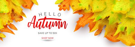 Horizontal banner for autumn sale.