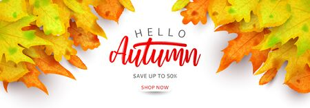 Horizontal colorful banner for autumn sale.