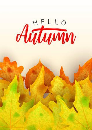 Beautiful autumn flyer template. Ilustrace