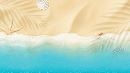 Top view on summer sea beach. Top view on ocean beach with soft waves. Beautiful background with seashells on sea sand. Vector illustration with plant's shadows.