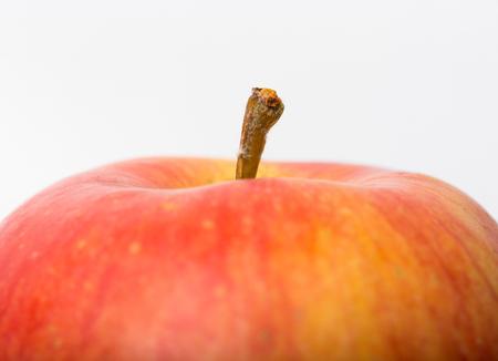 big apple: red ripe big Apple