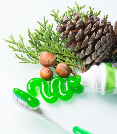 toothbrush with a bright green paste and pine cones Imagens