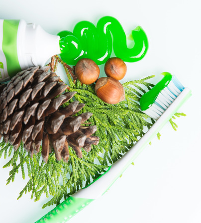 toothbrush with a paste and pine cones