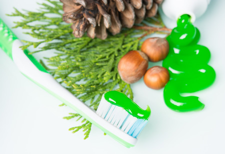 toothbrush with  pine cones Imagens