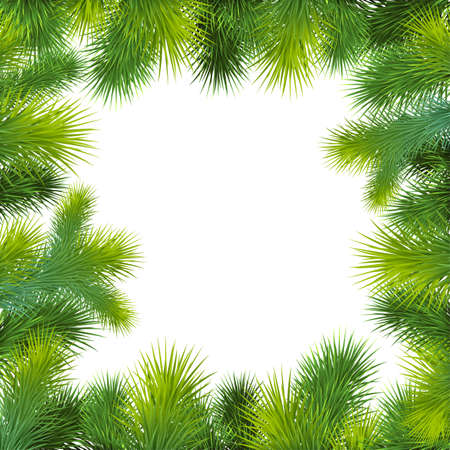 christmas background with christmas tree. Frame with green fir Vector