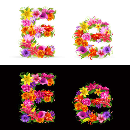 orange gerbera: E,   colorful flower font on white and black background.