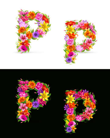 orange gerbera: P,  colorful flower font on white and black background.