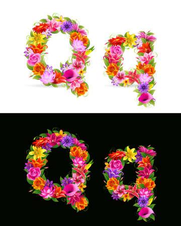 orange gerbera: Q,   colorful flower font on white and black background. Illustration
