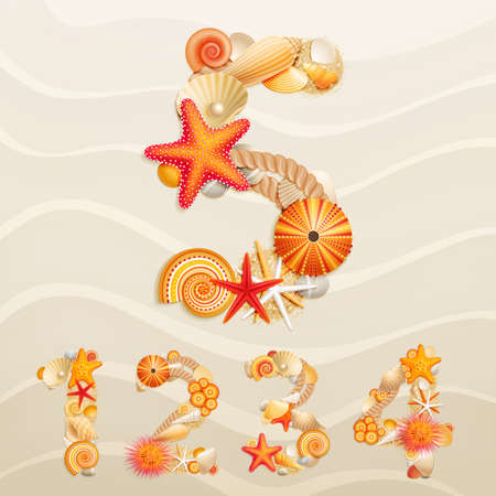 seashells: Numbers, vector sea life font on sand background.