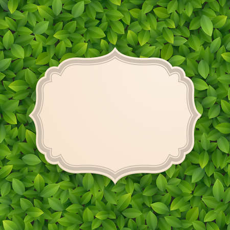 Vintage card on green leaves texture  Vector illustration Stock Vector - 14677998