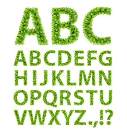 czcionki: Green Leaves Vector ilustracją czcionki Ilustracja