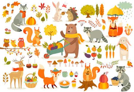 Conjunto de temas completos, estilo dibujado a mano de animales del bosque. Verduras, árboles, hojas, comida para el festival de la cosecha o el día de Acción de Gracias. Lindos personajes de otoño: oso, zorro, mapache, squirel. Ilustración de vector.