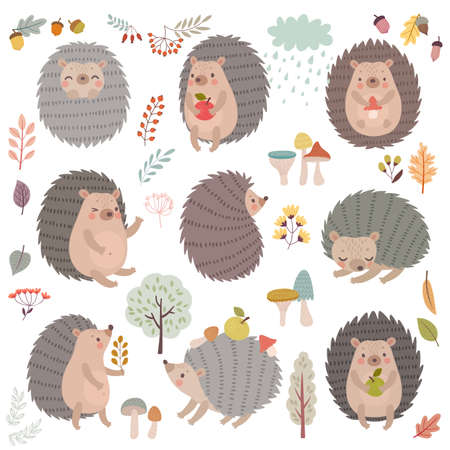 Hedgehog set hand drawn style. Cute Woodland characters playing, sleeping, relaxing and having fun. Vector illustration.