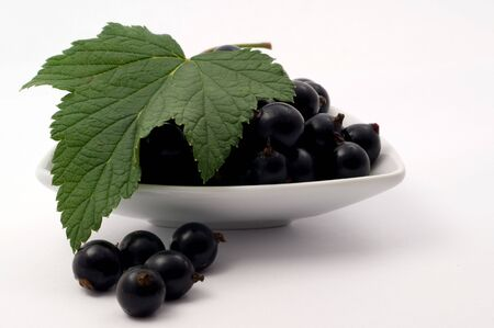 Fresh ripe black currant on a white background