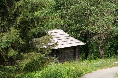 amide: Ancient ukrainian house amide the woods