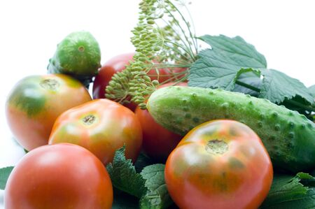 Fresh ripe tomatoes,cucumbers and spicy greens for salting on a white background Stok Fotoğraf