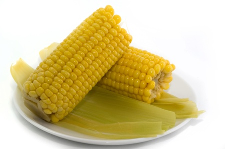 ripeness: Boiled corn lactic ripeness ona plate on a white background closeup
