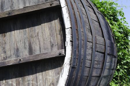 twined: An old wooden barrel twined hops in summer sunny day
