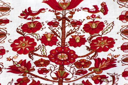 Fragment of traditional Ukrainian embroidery on a white canvas