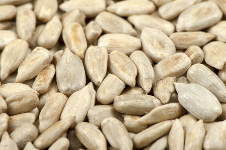 sunflower seeds: Background of roasted sunflower seeds kernels Stock Photo