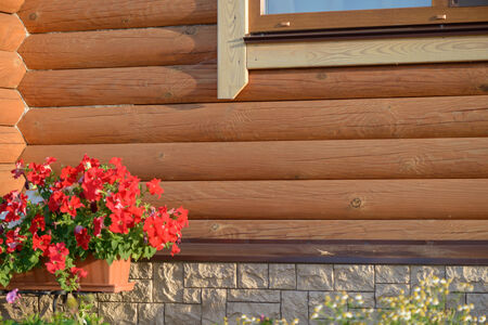 Flowers at the walls of a wooden summer houses Banco de Imagens