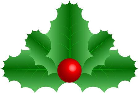 상징적 인 벡터 그래픽 녹색 붉은 열매와 나뭇잎