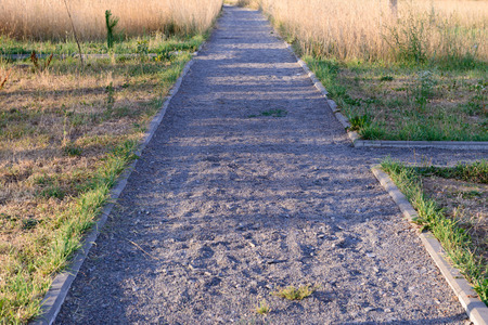 Van de de gang zonnige zomer van de grinttuin de ochtend Stockfoto