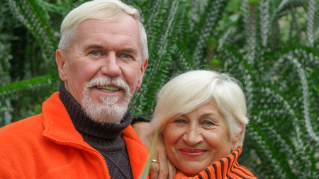 Loving elderly couple with gray hair in orange sweaters against a background of green plants Stock Photo