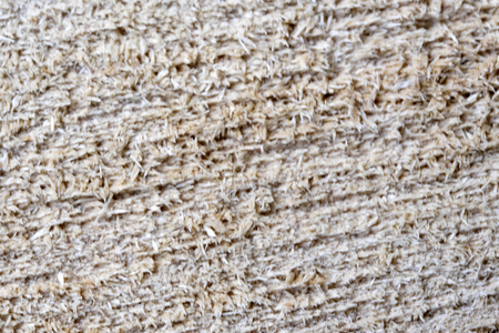 Wooden textural background from birch close-up macro shot Stock Photo