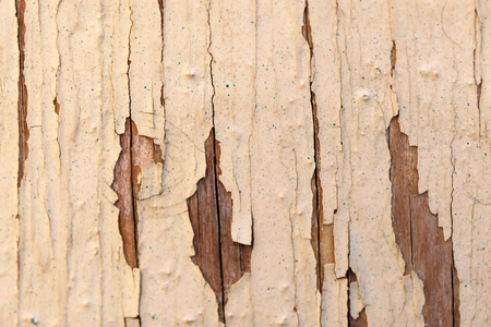 Wooden textural background close-up macro shot Reklamní fotografie