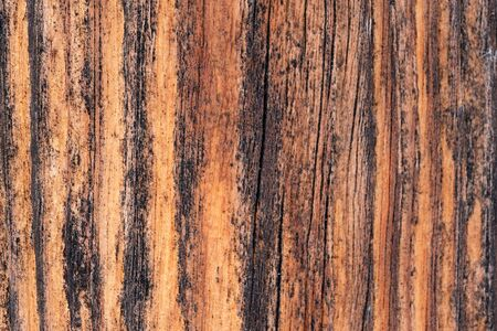 Artistic background of old wooden boards cracked outdoors close-up