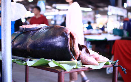Giant fish on table in thai market.